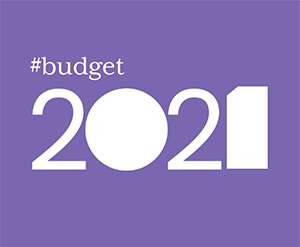 NWCI's Pre-Budget Submission has been Launched